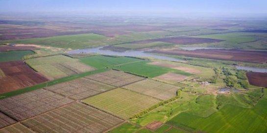 Почти 98% украинцев не знают о бесплатной земле от государства