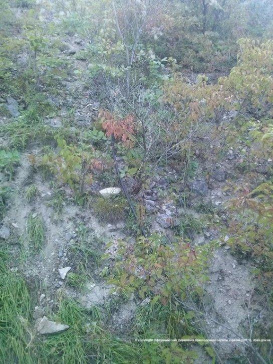 На границе обнаружили 600-метровый трубопровод для перекачки спирта (ФОТО)
