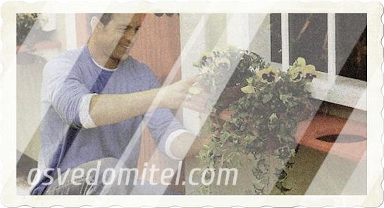 Как сделать корзину с цветами своими руками