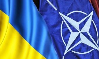 Стандарты НАТО уже к концу года станут нормой для 70% личного состава Минобороны