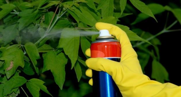 Каталог качественных семян и препаратов для борьбы с болезнями растений
