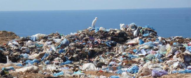 Ученые призвали жителей Земли отказаться от использования пластиковой упаковки